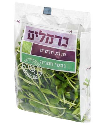 נבטי חמניה Sunflower Sprouts